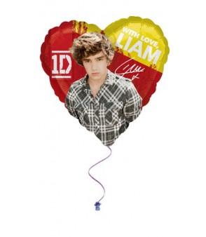 1d Liam