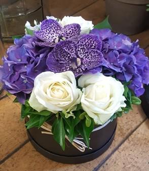 Vanda Orchid Hatbox